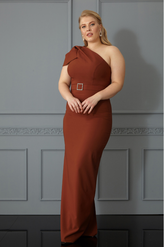 Brown plus size crepe single sleeve maxi dress