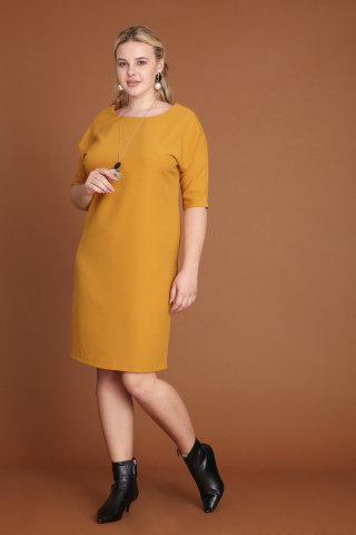 Ginger plus size dress